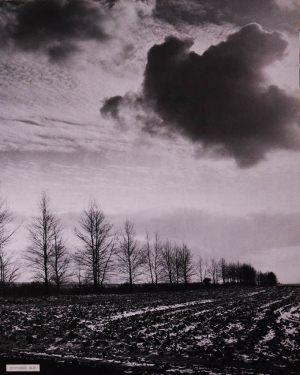 Болдинская осень в черно-белом