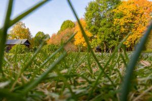 Болдинская осень. Усадьба Пушкина. Красивые осенние фото