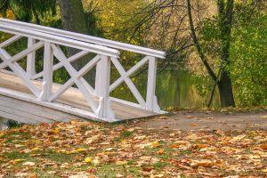 Болдинская осень. Горбатый мостик. Вход