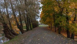 Болдинская осень. Усадьба Пушкина. Верхний пруд. Плотина