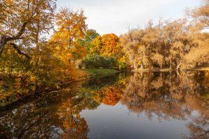 Нижний пруд. Усадьба Пушкина. Болдинская осень