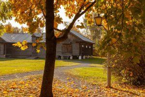 IБолдинская осень. Аллеи пушкинского парка. Красивые осенние фото