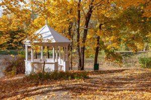 Болдинская осень. Усадьба Пушкина. Беседка. Красивые осенние фото