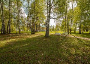 Усадьба во Львовке. Вид из парка на господский дом