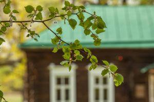 Усадьба во Львовке. Церковно-приходская школа