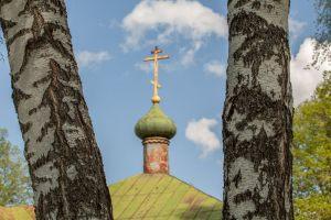 Усадьба во Львовке. Церковь Александра Невского. Крест на куполе