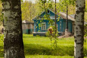 Дома в селе Львовка