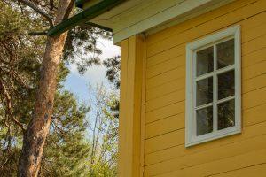 Усадьба во Львовке. Господский дом. Окно