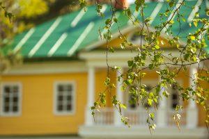 Усадьба во Львовке. Весенние мотивы