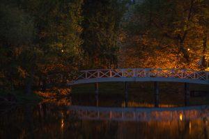 Большое Болдино. Горбатый мостик и верхний пруд. Вечернее фото усадьбы Пушкина