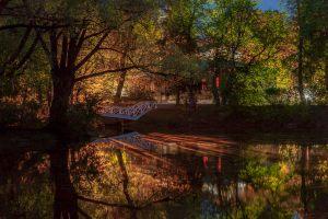 Большое Болдино. Верхний пруд и горбатый мостик. Вечернее фото усадьбы Пушкина