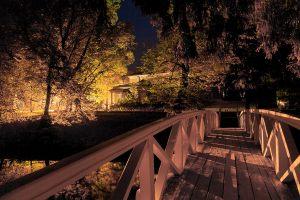 Большое Болдино. Горбатый мостик. Вечернее фото усадьбы Пушкина